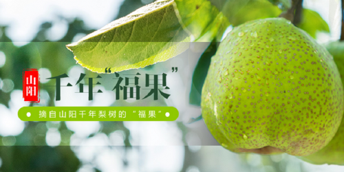 http://www.shangoudaohang.com/anli/191922.html