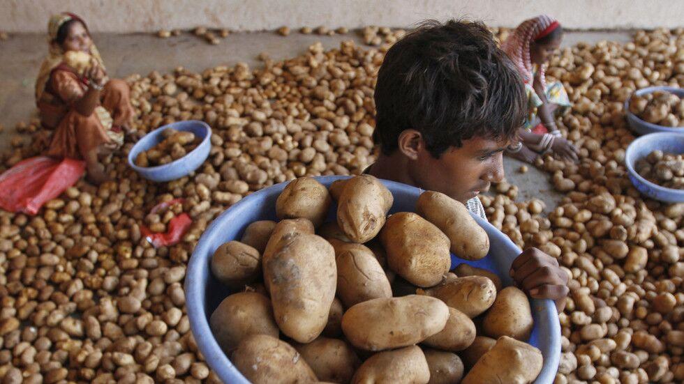 庭外和解?被百事起诉的印度土豆农:不会屈服于巨头
